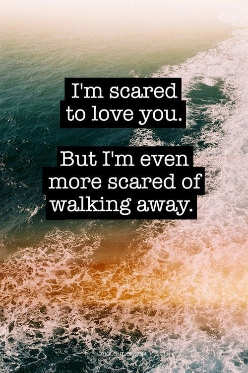 I\'m Scared To Love You But I\'m Even More Scared Of Walking ...