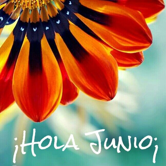 hola junio pictures photos and images for facebook tumblr