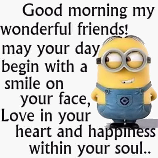 Good Morning Funny Quotes: Good Morning My Wonderful Friends Pictures, Photos, And