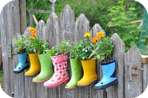 Hanging Garden Boots Pictures Photos and Images for Facebook