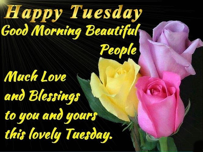 Tuesday Morning Quotes Good Morning Happy Tuesday Quotes Pictures Photos And Images For .