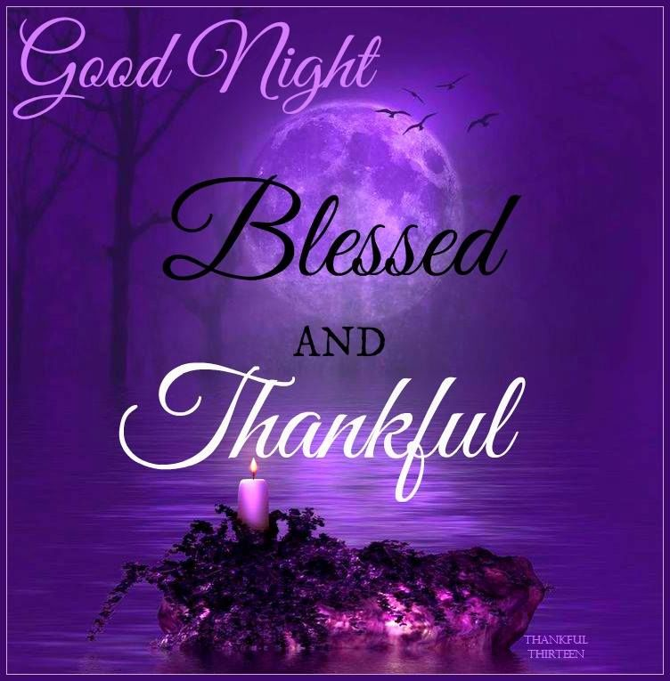 Good Night Blessings Quotes Quotes