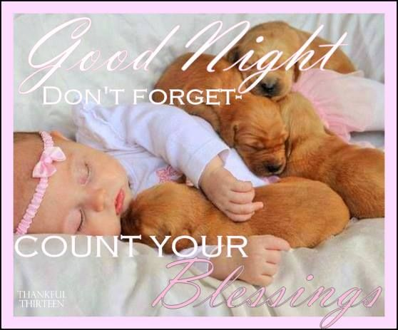 Good Night Blessings Images And Quotes: Good Night Count Your Blessings Pictures, Photos, And