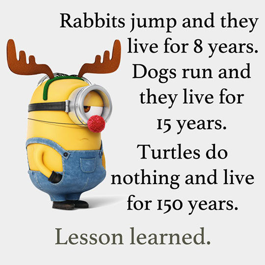 Funny Quotes With Pictures About Life: Lesson Learned Pictures, Photos, And Images For Facebook