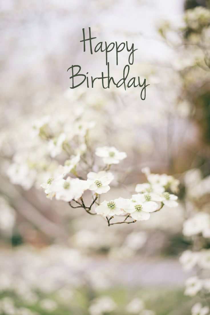Pretty Happy Birthday Quote Pictures Photos And Images For Facebook Tumblr Pinterest And