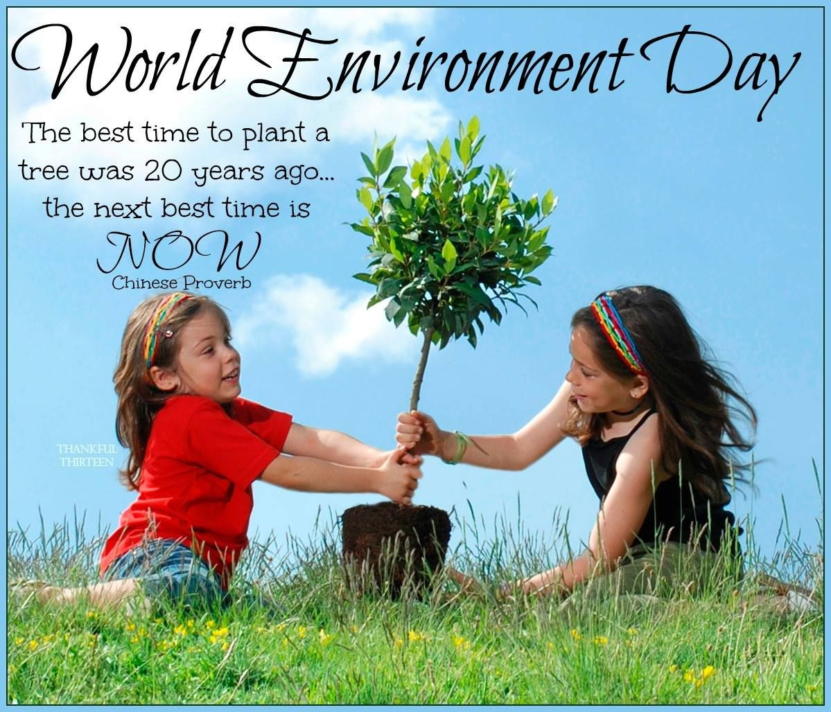 essay on world environment day druggreport35 web fc2 com essay on world environment day