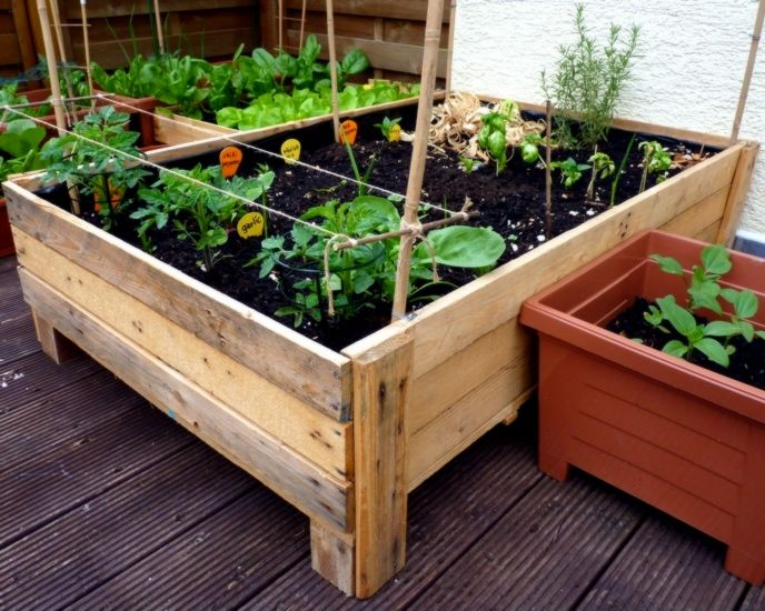 Container Garden Box From Pallets Pictures Photos And