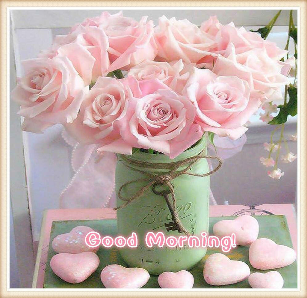 Image result for good morning flowers images