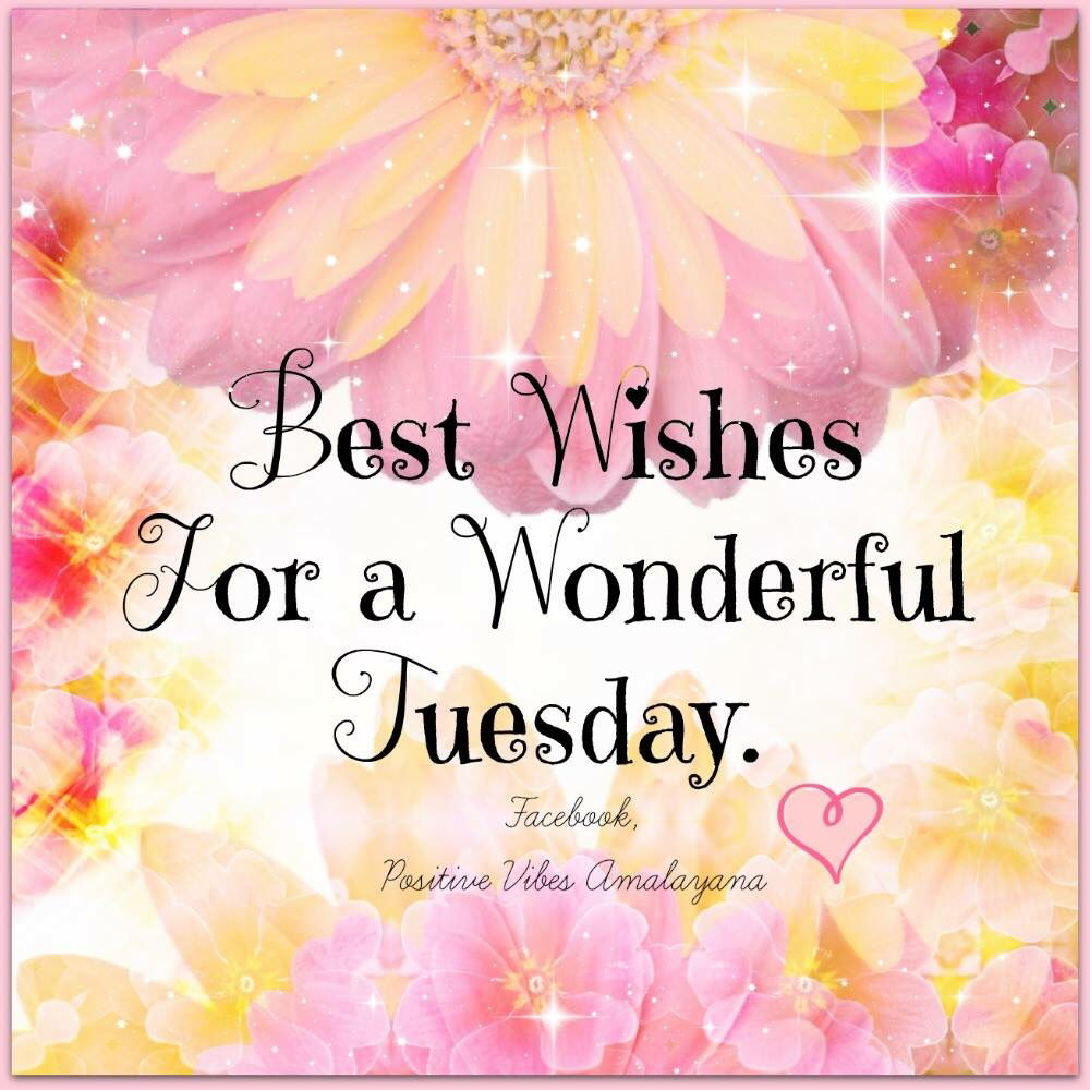 Good Wishes Quotes Best Wishes For A Beautiful Tuesday Pictures Photos And Images