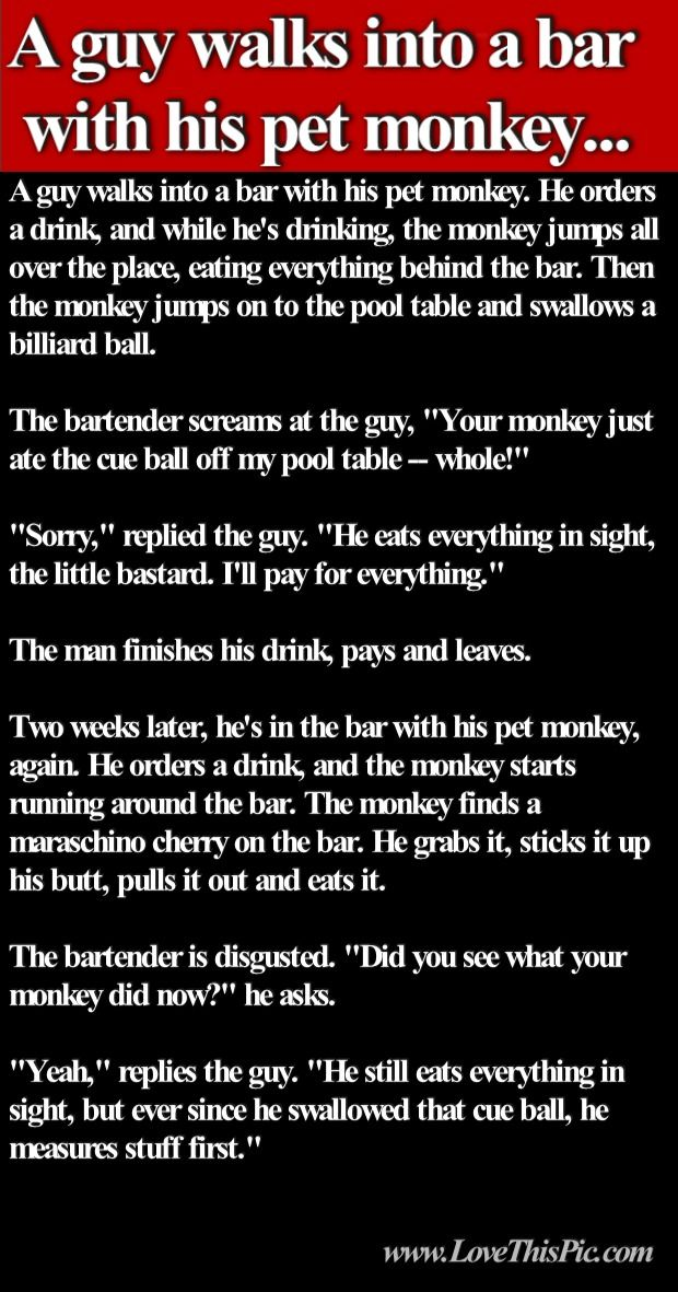 A Guy Walks Into A Bar With His Pet Monkey Joke Pictures ...  A Guy Walks Int...