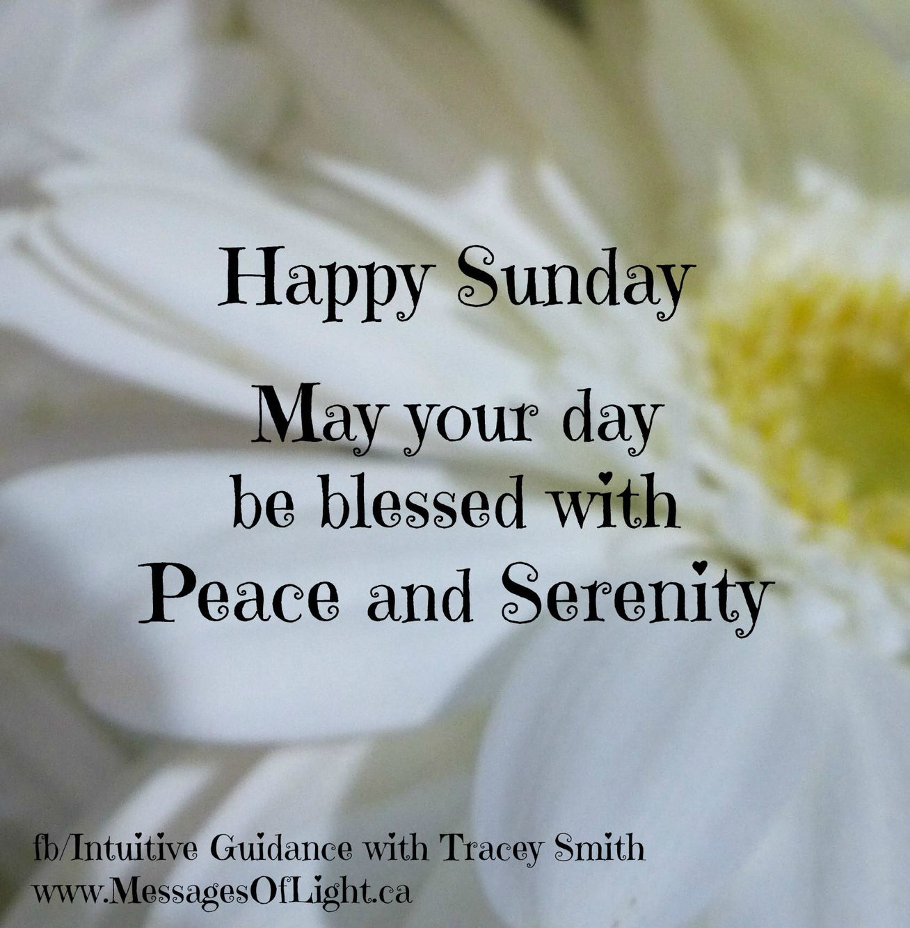 Happy Sunday Quotes Happy Sunday May Your Day Be Blessed Pictures, Photos, and Images  Happy Sunday Quotes