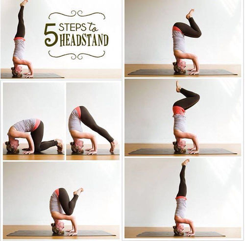 5 Steps To A Head Stand Pictures, Photos, and Images for ...