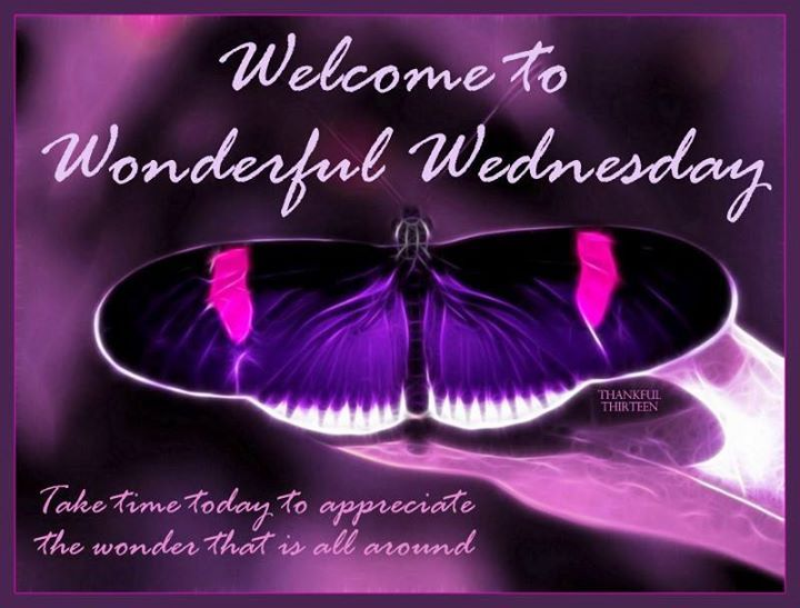 Wonderful Wednesday Pictures Photos And Images For