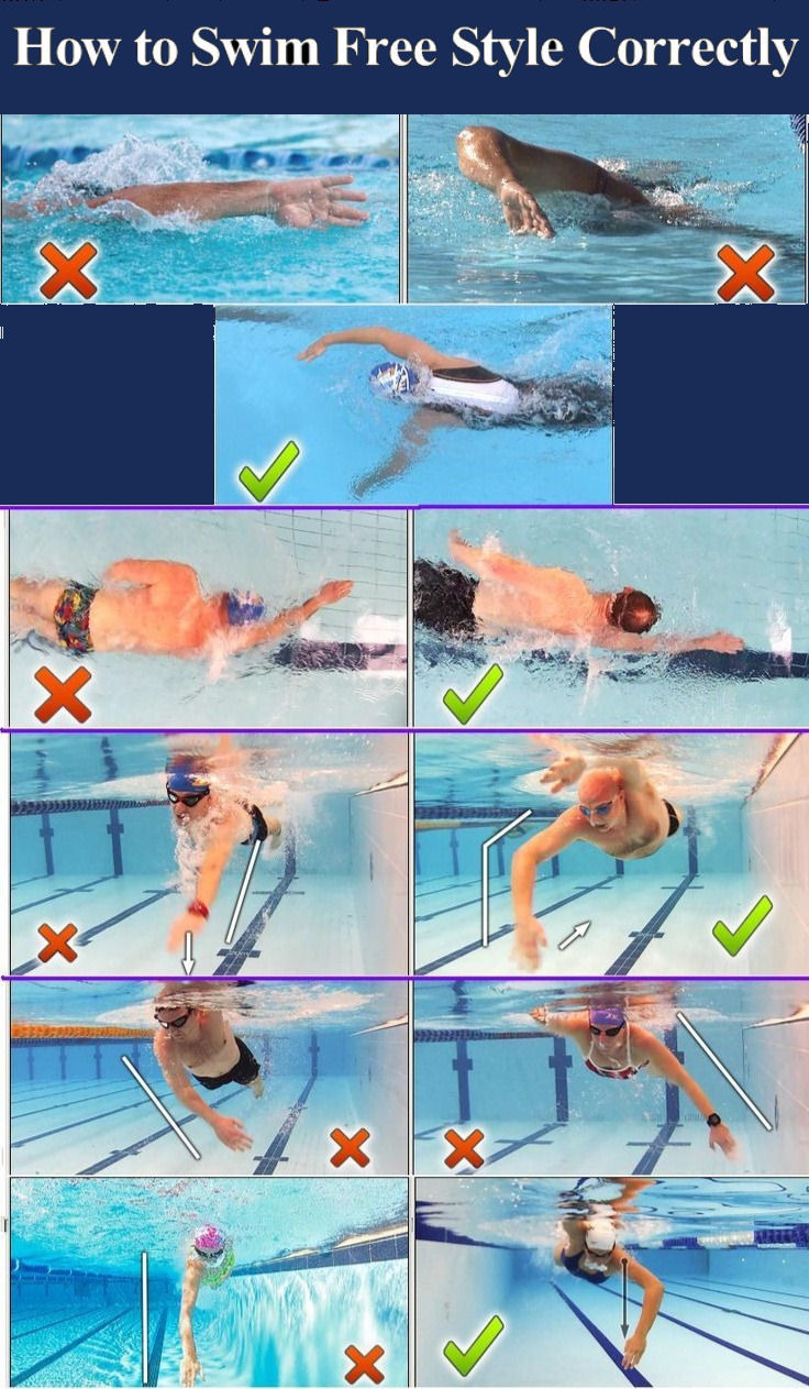 How To Swim Free Style Correctly Pictures Photos And