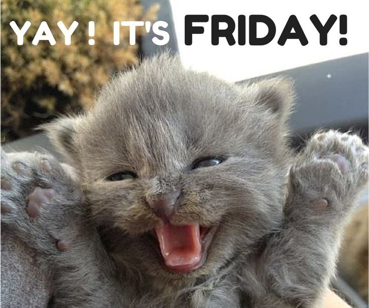 Its Friday: Yay It's Friday Pictures, Photos, And Images For Facebook
