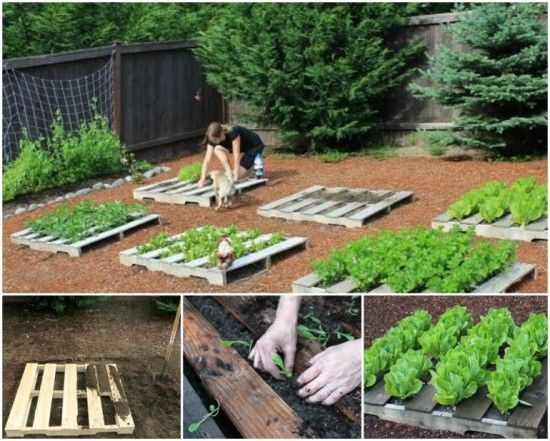 Awesome Easy DIY Pallet Herb Garden