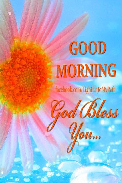 Good Morning Everyone God Bless You All : Good morning god bless you pictures photos and images