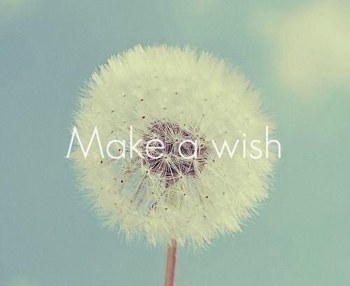 www.lovethispic.com/uploaded_images/183404-Make-A-Wish.jpg