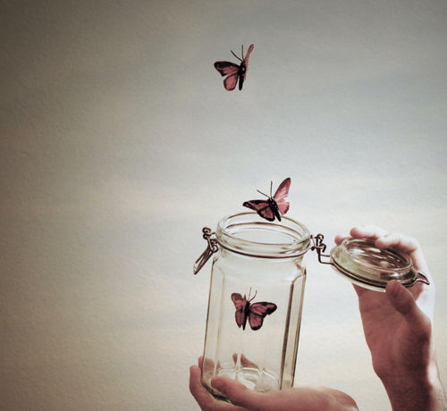 http://www.lovethispic.com/uploaded_images/184299-Butterflies-In-A-Jar.jpg