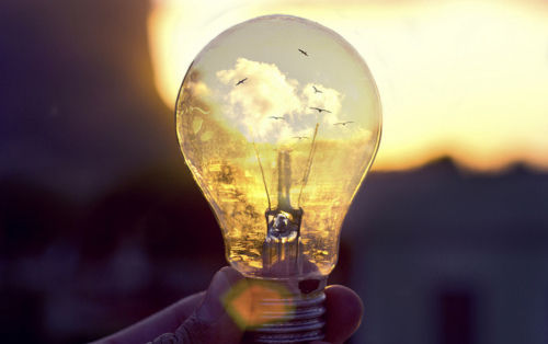 The Natures Lightbulb Pictures Photos And Images For Facebook