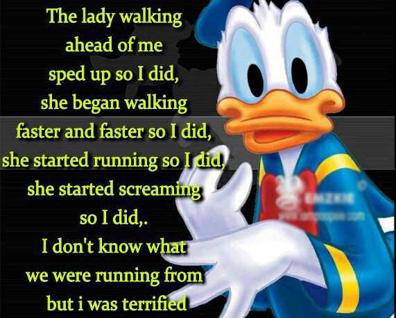 funny duck quotes