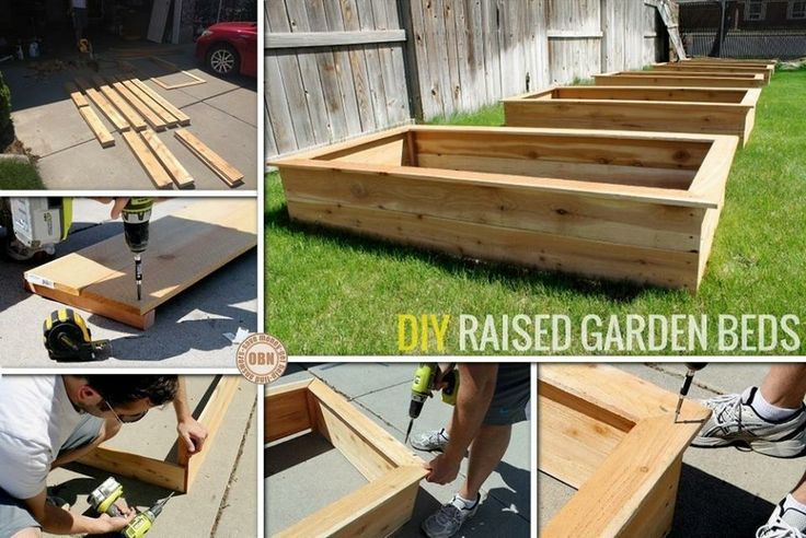 Diy Raised Garden Beds Pictures Photos And Images For