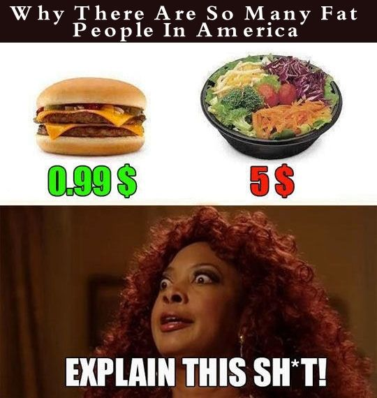 How Fat Is America 121