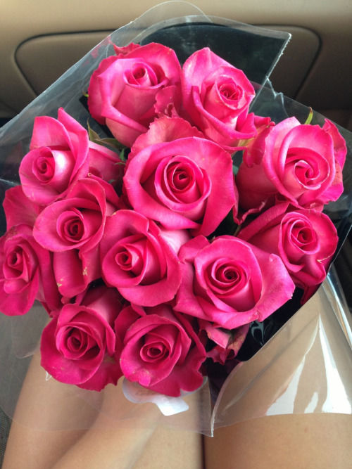Tumblr Pink Roses