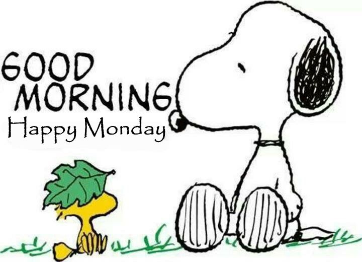 Snoopy Good Morning Happy Monday Pictures, Photos, And