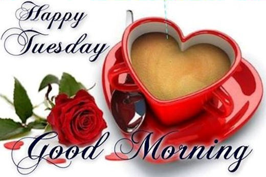 Happy tuesday good morning quote pictures photos and images for