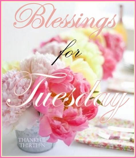 Happy tuesday have a blessed day pictures photos and images for happy tuesday have a blessed day m4hsunfo