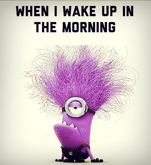 Purple Minion Memes Funny: When I Wake Up In The Morning Pictures, Photos, And Images