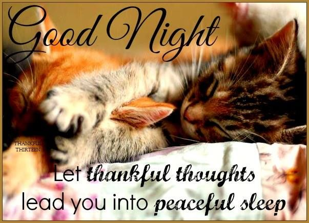 Image result for good night quotes thanksgiving images