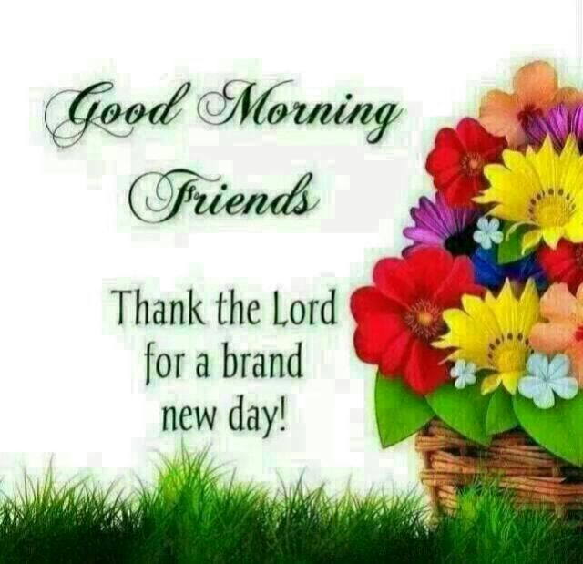 Good Morning Quotes New Day : Good morning friends thanks the lord for a brand new day