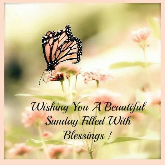 Image result for beautiful sunday images