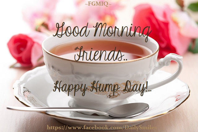 Good Morning Friends Happy Hump Day Pictures, Photos, and Images for Facebook, Tumblr, Pinterest, and Twitter