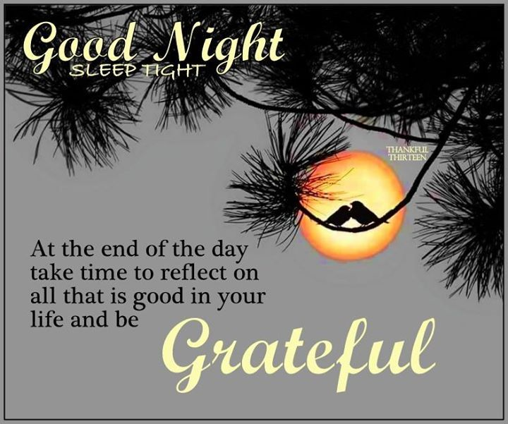 good night sleep tight be grateful