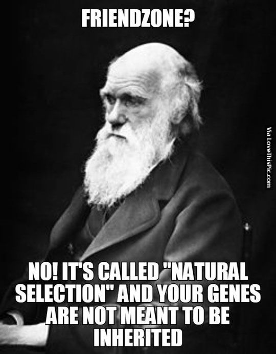 Charles Darwin Is Fed Up With All This Friendzone Talk