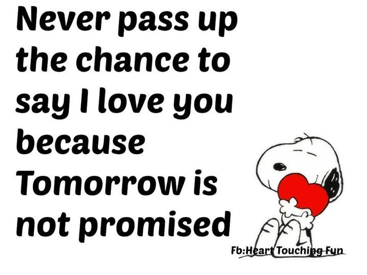 Never Pass Up A Chance To Say I Love You Because Tomorrow