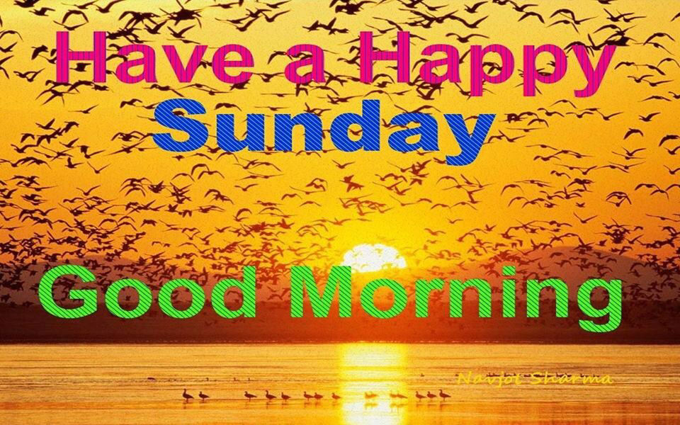 Good Morning Have A Happy Sunday Pictures, Photos, And