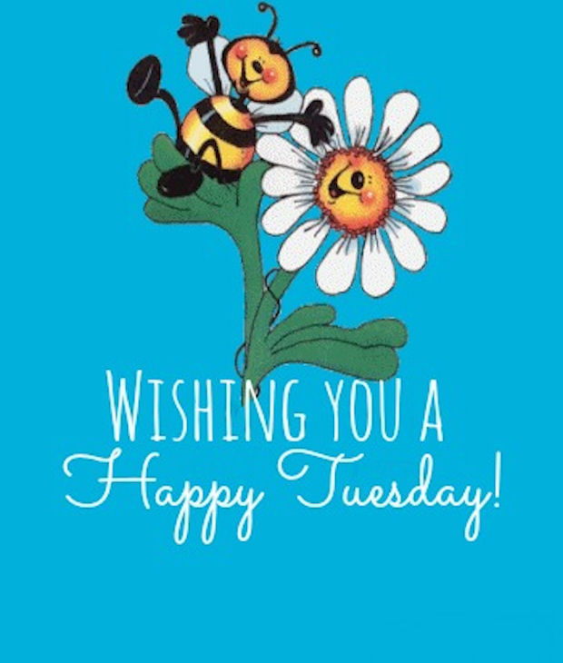 Exceptionnel Wishing You A Happy Tuesday