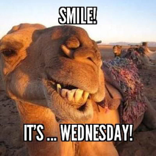 Smile Its Wednesday Pictures, Photos, and Images for ...