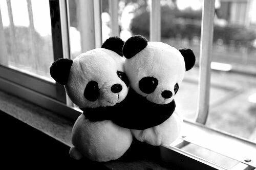 Panda hug pictures photos and images for facebook - Black and white love pictures ...