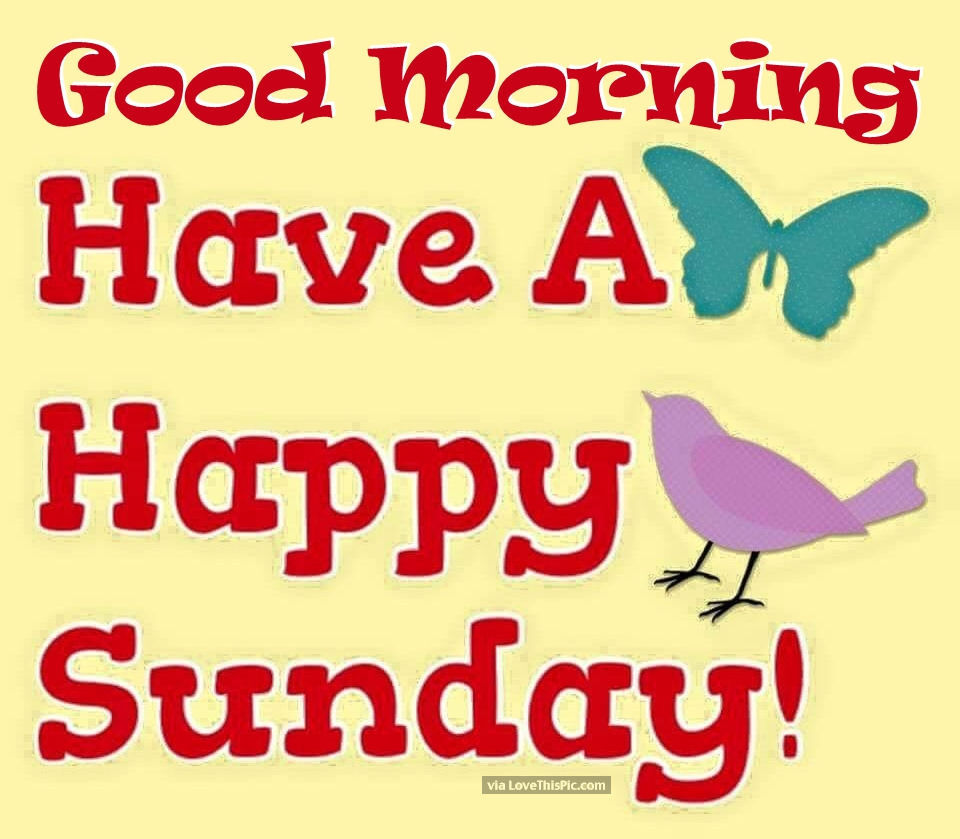 Good Morning Sunday Images And Quotes Happy Funday Wishes: Good Morning Have A Happy Sunday Pictures, Photos, And