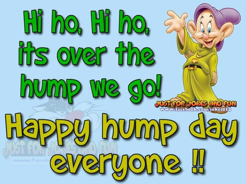 Perfect Happy Hump Day Everyone