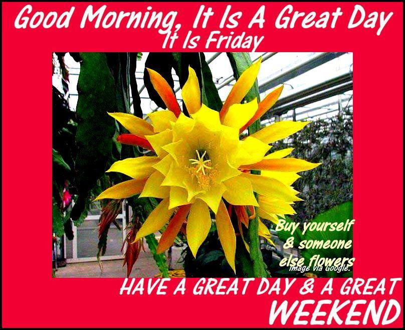 Image result for have a great friday and weekend
