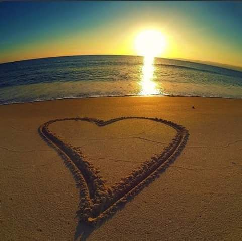 Heart In The Sand Pictures Photos and Images for