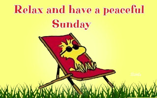 Good Morning Sunday Images And Quotes Happy Funday Wishes: Relax And Have A Peaceful Sunday Pictures, Photos, And