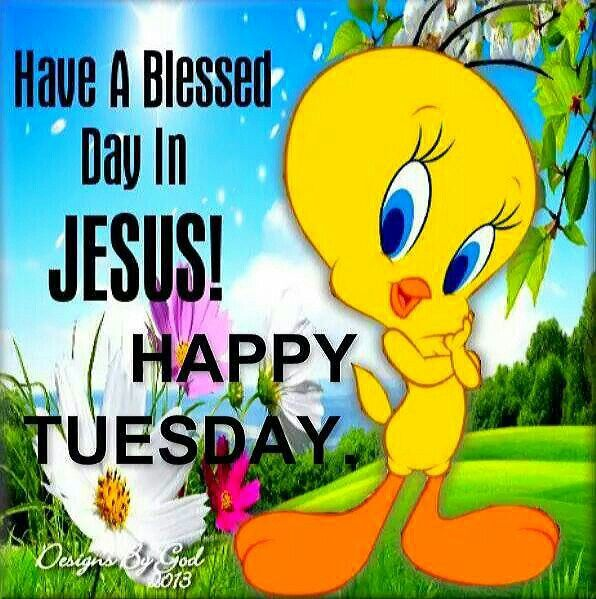 Happy Tuesday Have A Blessed Day In Jesus Pictures, Photos ...