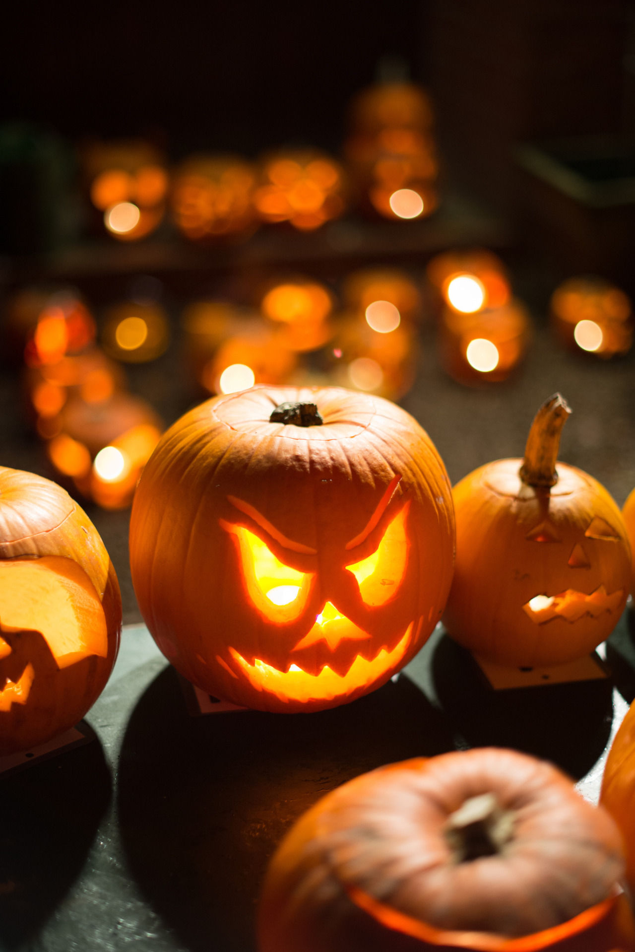 Pumpkin Jack O Lanterns Pictures, Photos, and Images for ...